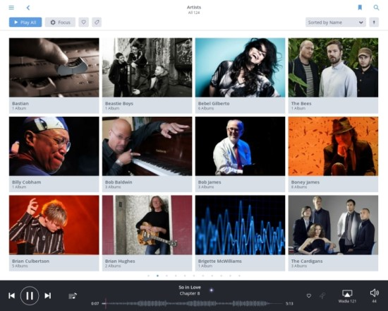 Roon 12 artists